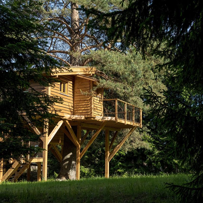 construire une maison dans les arbres amazing visuel du plancher comment construire une cabane. Black Bedroom Furniture Sets. Home Design Ideas